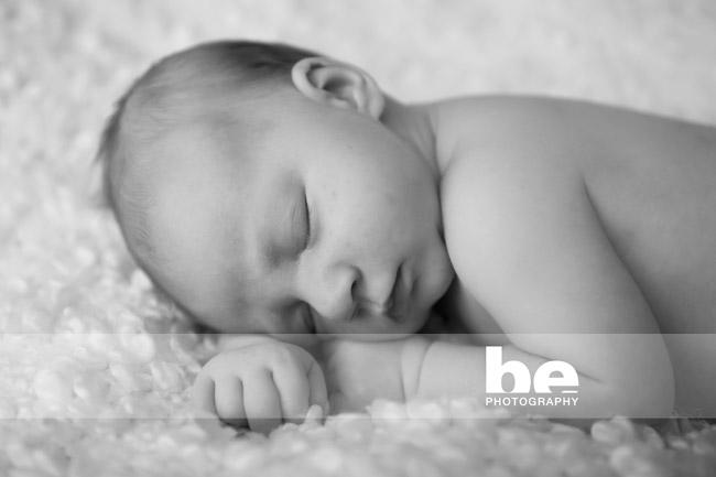 perth newborn portrait (4)