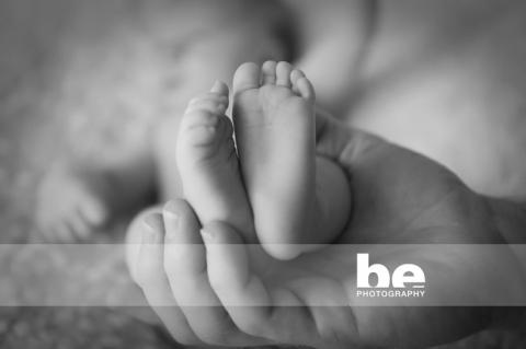 perth newborn portrait (3)