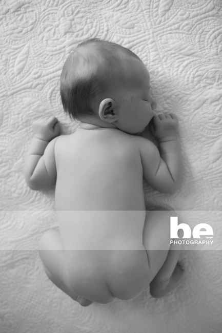perth newborn portrait (2)