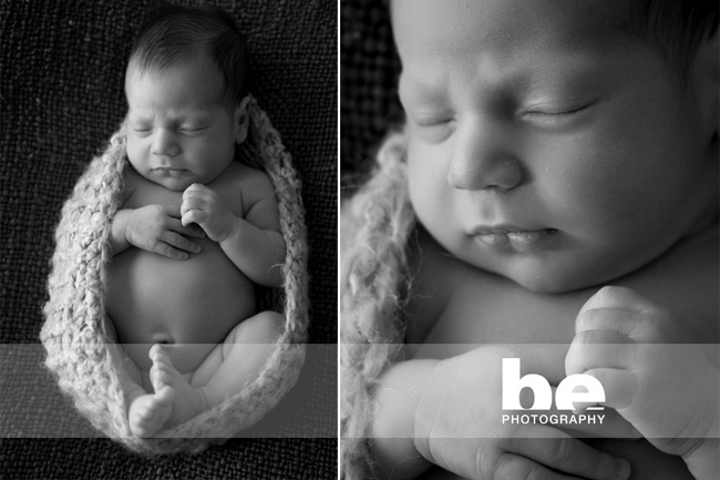 newborn photography fremantle studio (1)