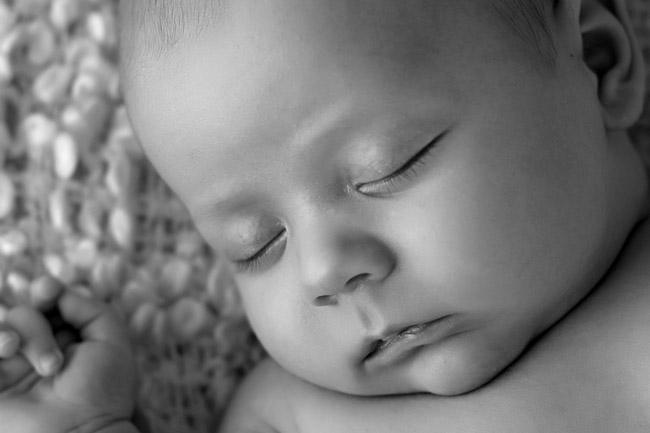 baby portraits fremantle (1)