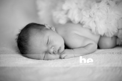 newborn baby portraits fremantle studio (2)