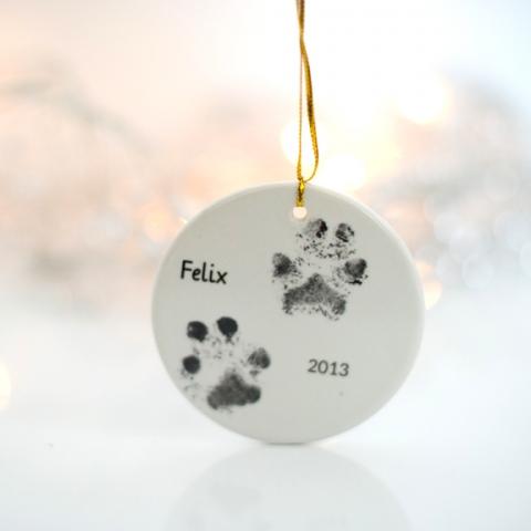 Pet Christmas present idea