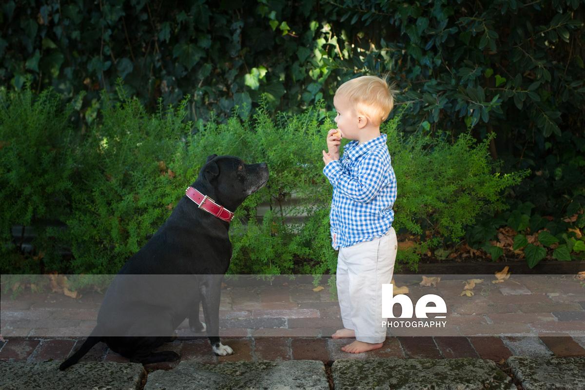 dog and child portrait