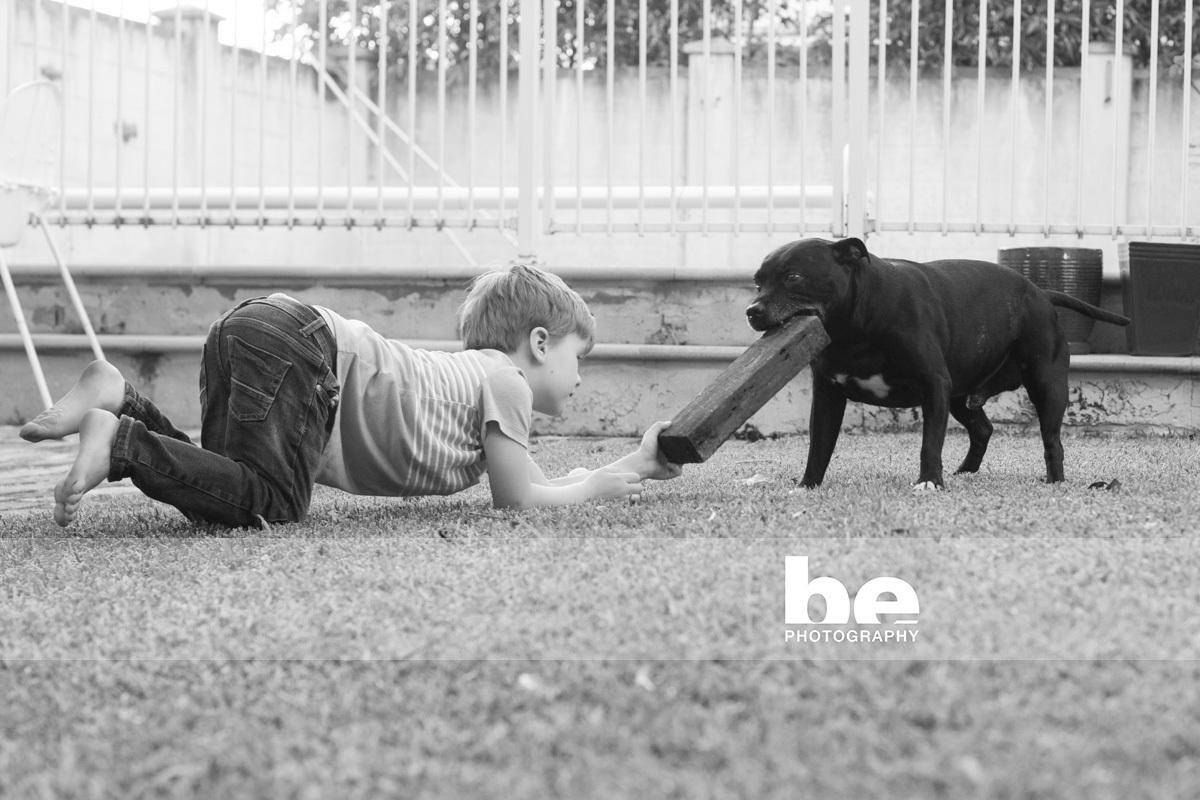 dog and boy portrait
