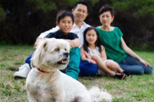Perth-family-portrait-photography015.jpg